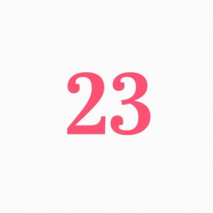 23 header module