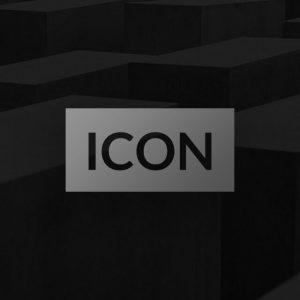 Icon Business Theme