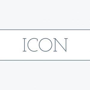 Icon Simple